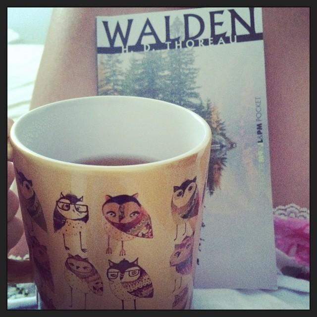 cha _ walden